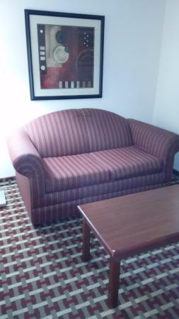 Quality Suites: sleeper sofa