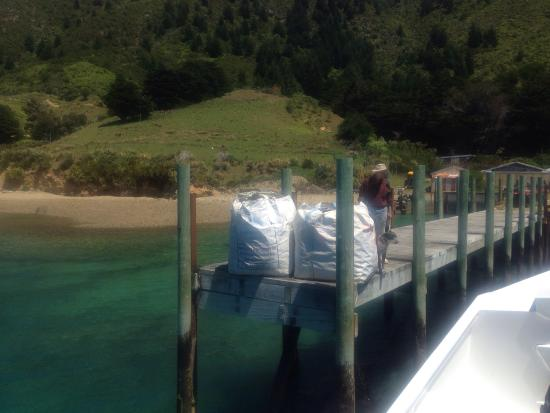 Pelorus Mail Boat: photo5.jpg