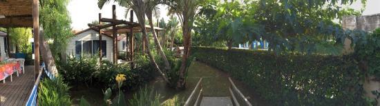 Punta Braccetto Photo