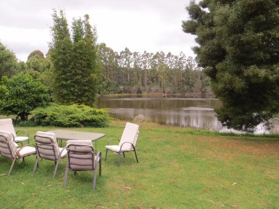 Jenny's Lake : garden