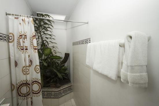Hotel 1492 : Baño con jardín interno