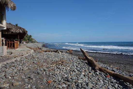 Playa El Tunco 2020 All You Need To
