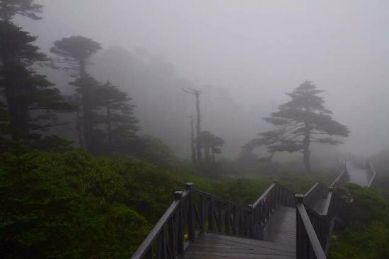 Cangshan Mountain: Rainy and foggy