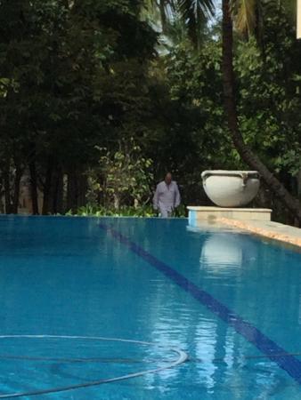 Shreyas Yoga Retreat Image