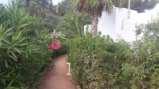 Cala Llenya, Spanien: 20150726_094241_large.jpg