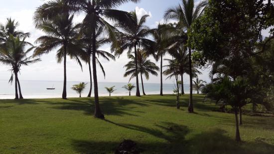 Four Twenty South Beach Cottages: Landscape between cottages & beach