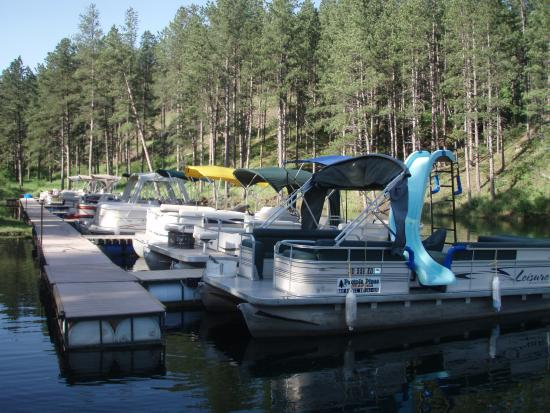 Pactola Pines Marina: Pontoon/Boats/Paddle Board Rentals