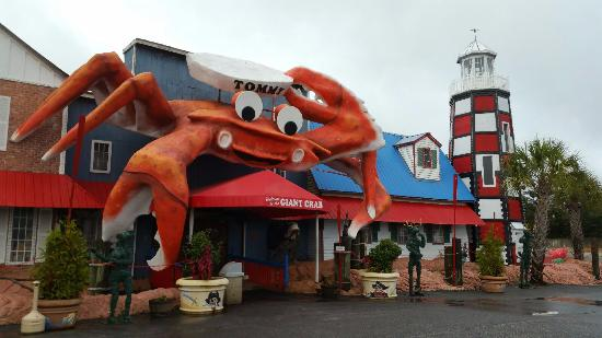 Thegiant Crab Outside Picture Of Giant Crab Seafood