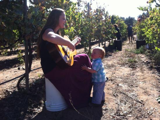 Ramona, Kalifornien: Raffaella & Francesco, entertaining during the harvest
