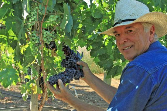 Principe di Tricase Winery