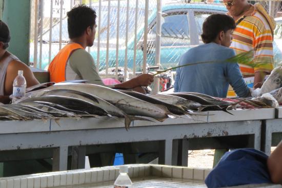 Fish market picture of old apia market apia tripadvisor for Fish market louisville