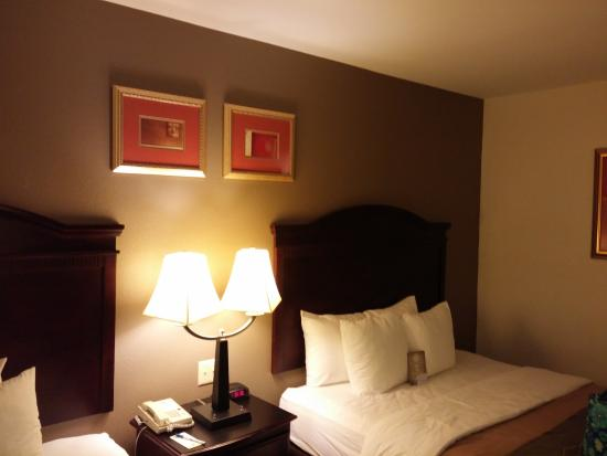 Comfort Inn & Suites Airport Dulles-Gateway: Beds