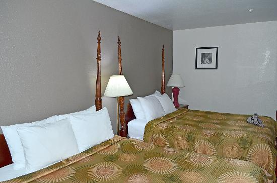 Comfy beds picture of buena vista motor inn san for Buena vista motor inn san francisco ca