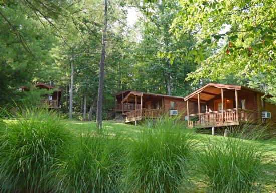Premium Loft Cabin Picture Of Yogi Bear S Jellystone