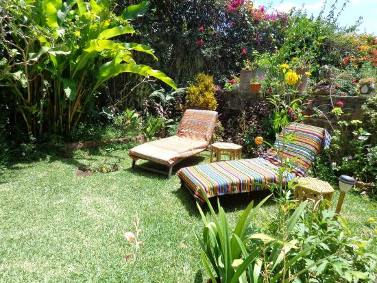 Luna Azul Garden Suites & Casita - UPDATED 2018 Guest house Reviews ...