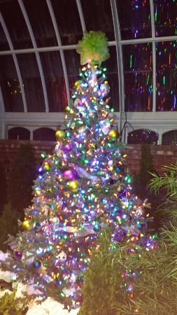 phipps conservatory and botanical gardens o christmas tree