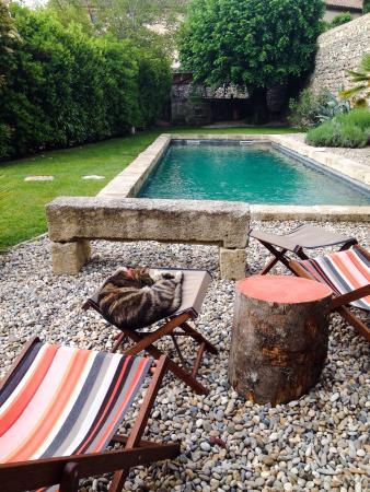 Guest House Felisa: Le jardin
