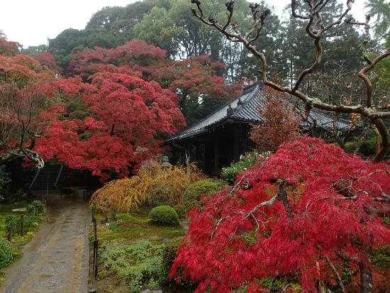 Daimon-ji Temple