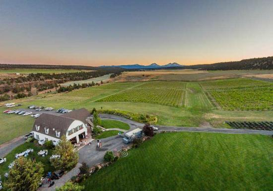 Terrebonne, OR: Faith, hope and Charity Vineyards