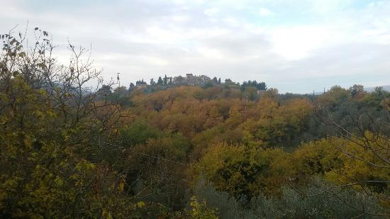Giano dell'Umbria, Italien: 20151208_094520_large.jpg