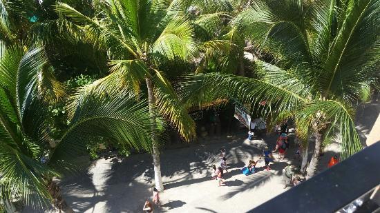 Plazamar: 20151129_110424_large.jpg
