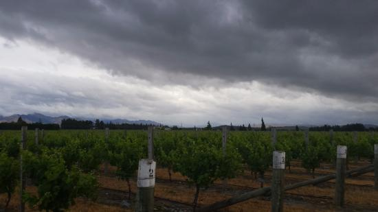 Marlborough Vintners Hotel Heritage Boutique Collection: Beautiful views all around