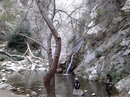 Big Santa Anita Canyon: Water Falls