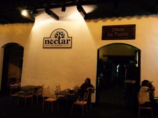 Nectar: Street view