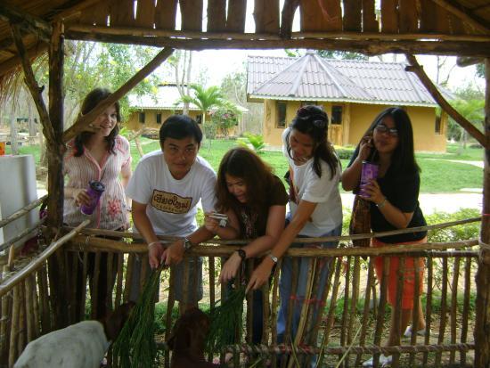 Kaeng Krachan, Thailand: รักสัตว์มาก