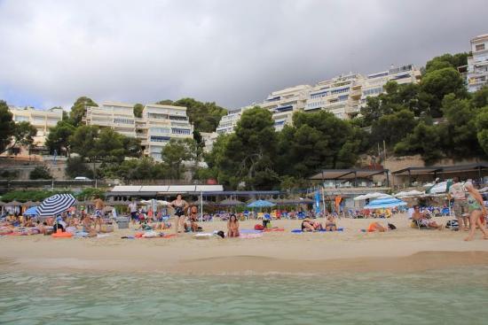 вид на пляж с моря - Picture of Illetas Beach, Illetes - TripAdvisor