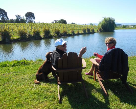 Ruby Bay, Nya Zeeland: A lazy afternoon at the pond