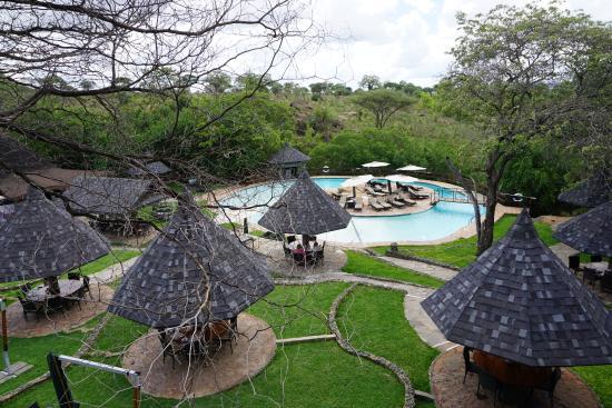12 Tarangire Sopa Lodge