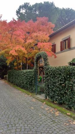 Castelgandolfo Golf and Country Club : Scorcio