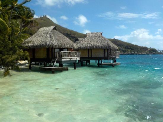 vue du bungalow sur pilotis photo de maitai polynesia bora bora bora bora tripadvisor. Black Bedroom Furniture Sets. Home Design Ideas