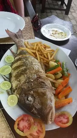 Tartaruga Hotel & Beach Restaurant: great fresh fish lunch