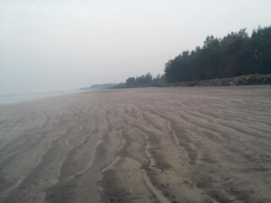 Nagaon Beach Picture Of Sagar Shrushti Alibaug