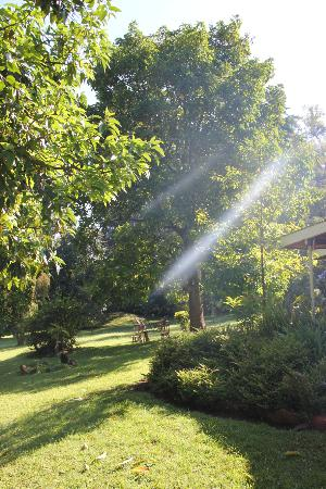 Muremba Retreat Kitale: Gardens