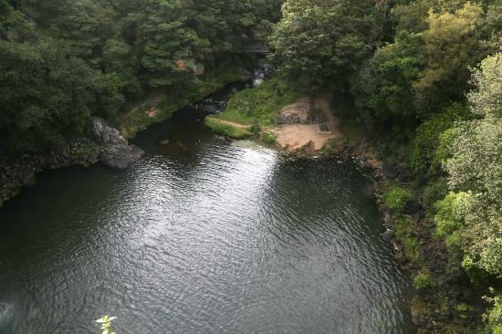 วานกาไร, นิวซีแลนด์: Bottom of falls