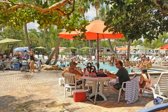 Tropical Palms Resort And Campground Updated 2019 Prices Reviews