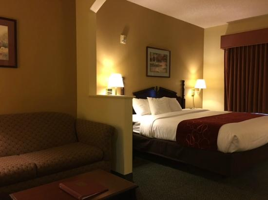 Comfort Suites Bush Intercontinental Airport: Comfort Suites IAH Airport - King Room Suite