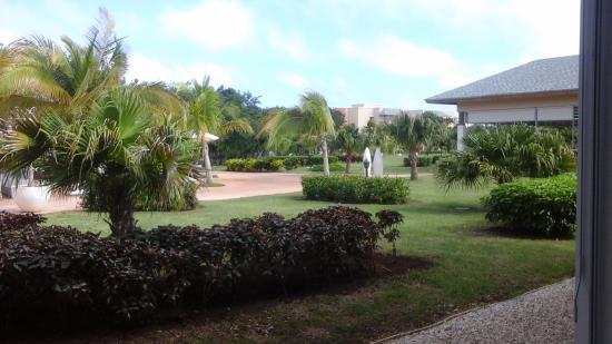 Amigos picture of melia jardines del rey cayo coco for Jardines del rey