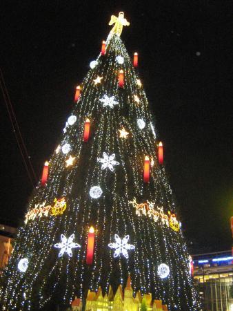 Dortmund Weihnachtsbaum.Der Größte Weihnachtsbaum Der Welt Bild Von Hotel Königshof
