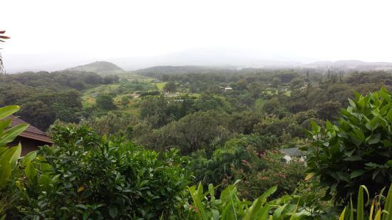 Maui Tradewinds: paradise