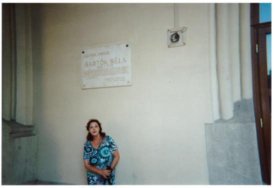 Bela Bartok Memorial House: La targa davanti all'ingresso della casa di Bartok.