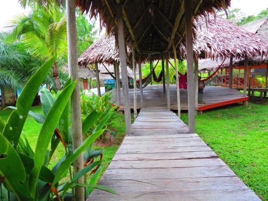 Amazon Rainforest Lodge: Zona de hamacas