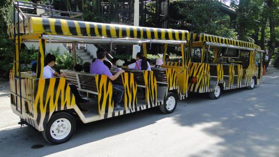 Dusit Zoo: The little train in the zoo