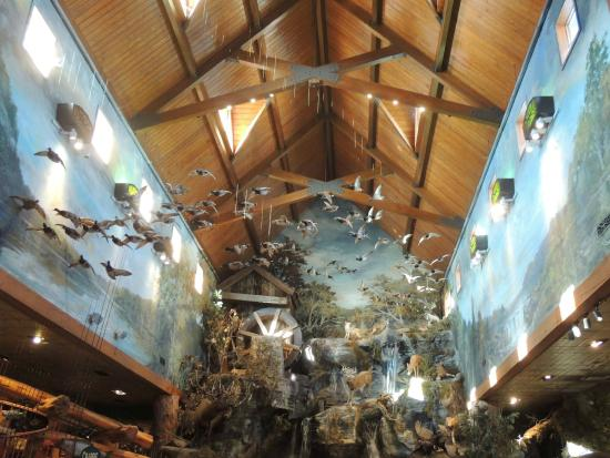 Cool bathrooms (what Branson is known for) - Picture of Bass Pro ...