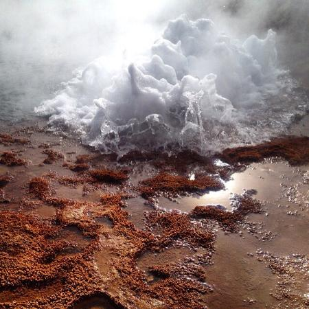 Volcano Aventura