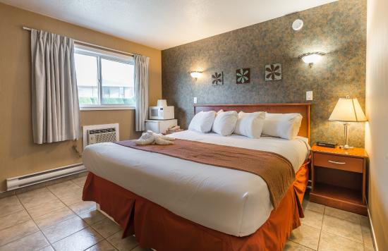 Oasis Inn: King Room