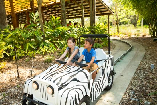 Legoland Florida Resort: What will you find on Safari Trek? A lion, a Zebra, maybe even an Elephant?